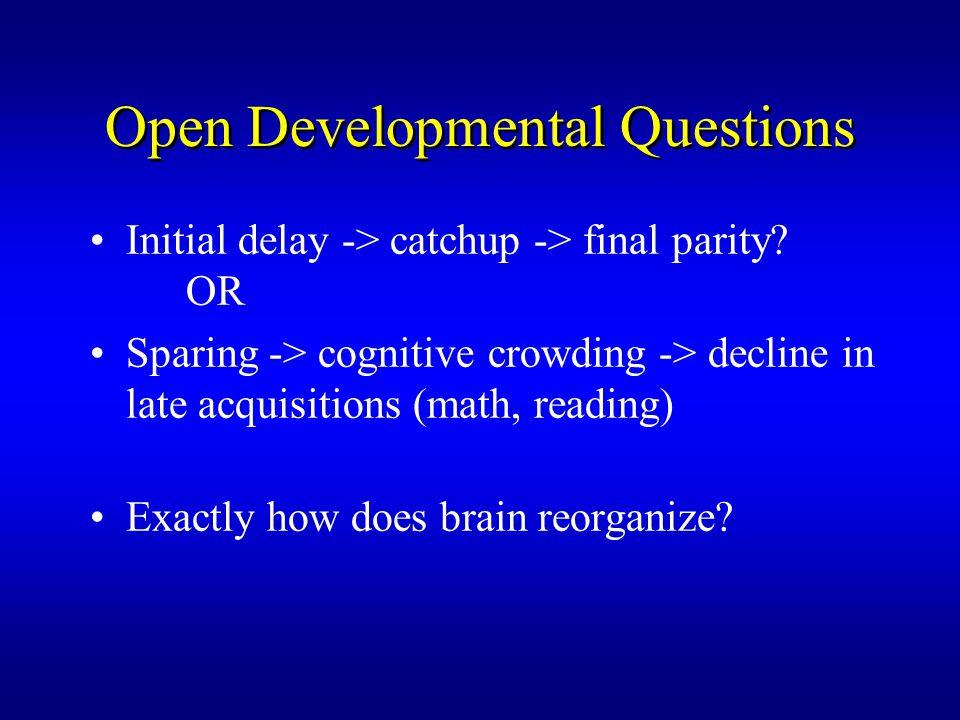 Open Developmental Questions