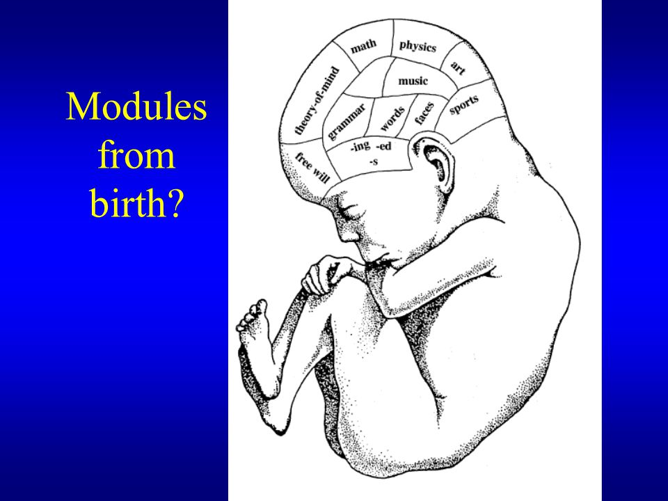 Modules from birth