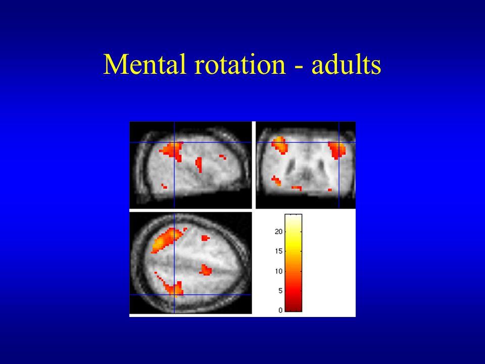 Mental rotation - adults