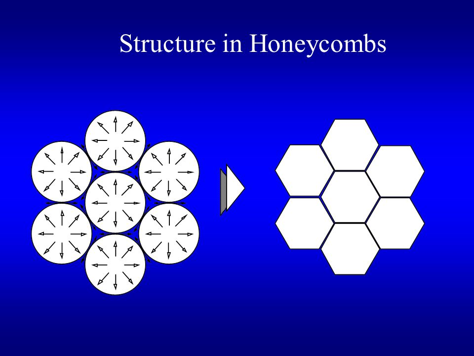 Structure in Honeycombs