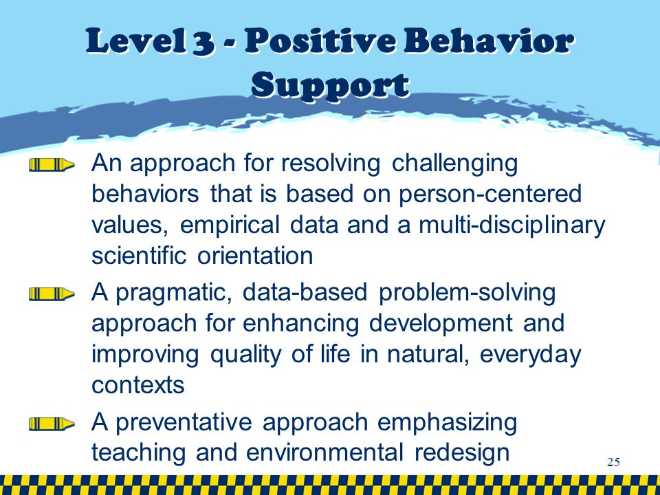 Level 3 - Positive Behavior Support