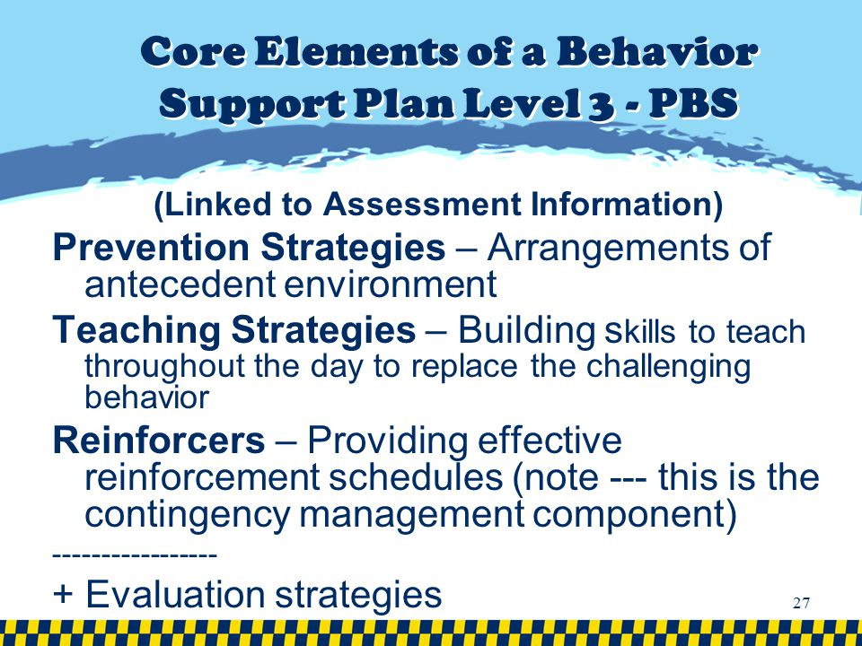 Core Elements of a Behavior Support Plan Level 3 - PBS