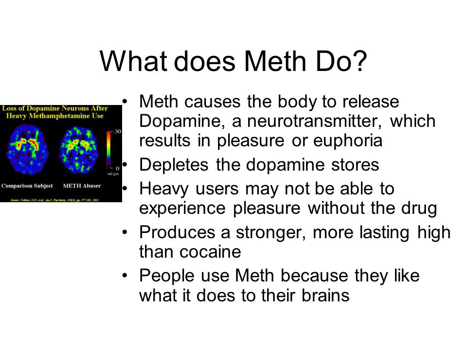 What does Meth Do Meth causes the body to release Dopamine, a neurotransmitter, which results in pleasure or euphoria.