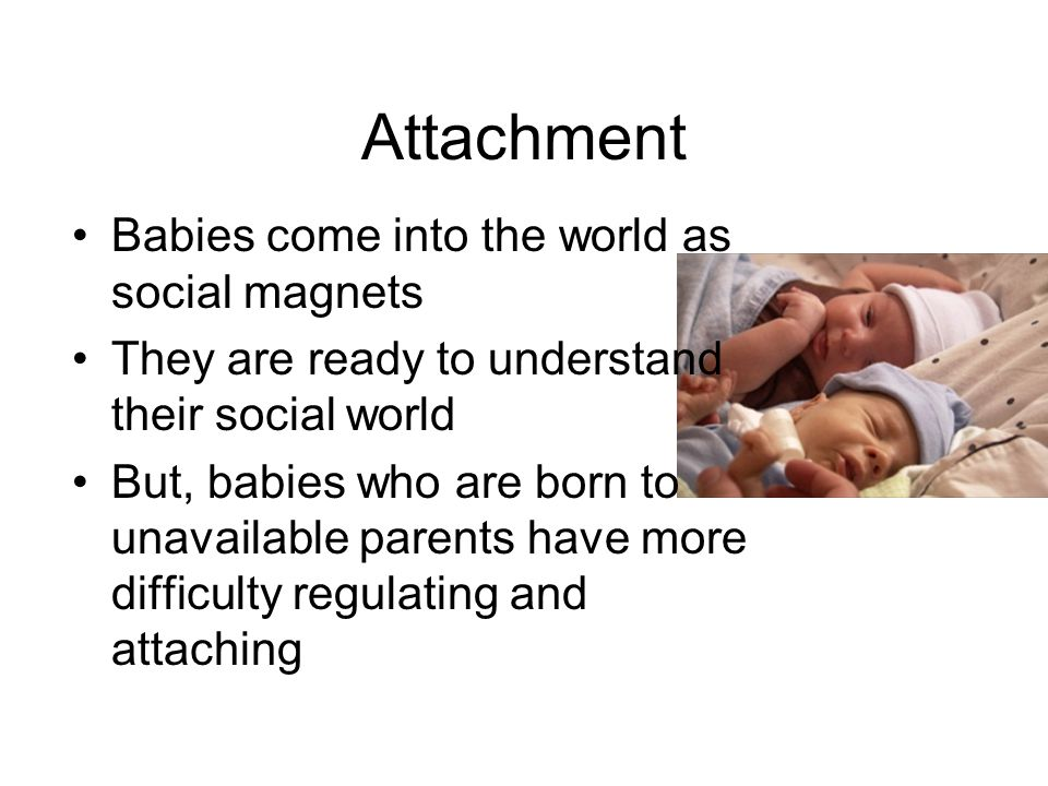 Attachment Babies come into the world as social magnets