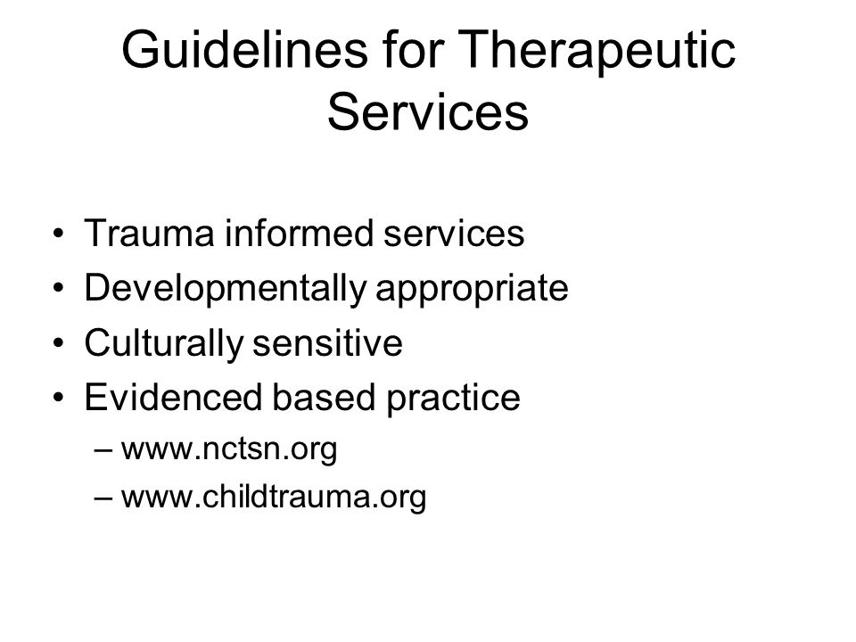 Guidelines for Therapeutic Services