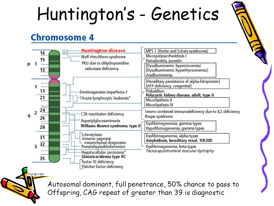 Huntington's - Genetics