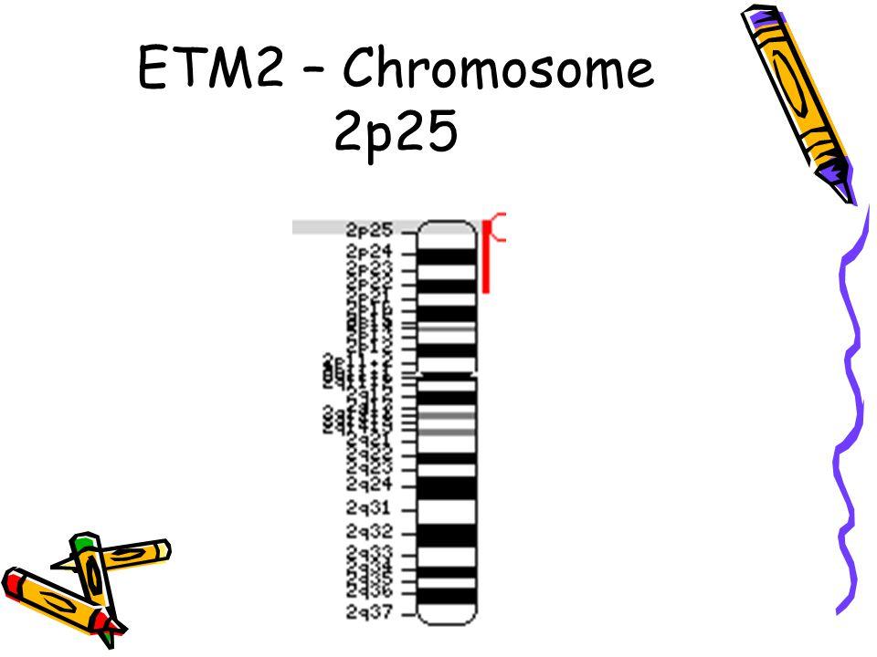 ETM2 – Chromosome 2p25