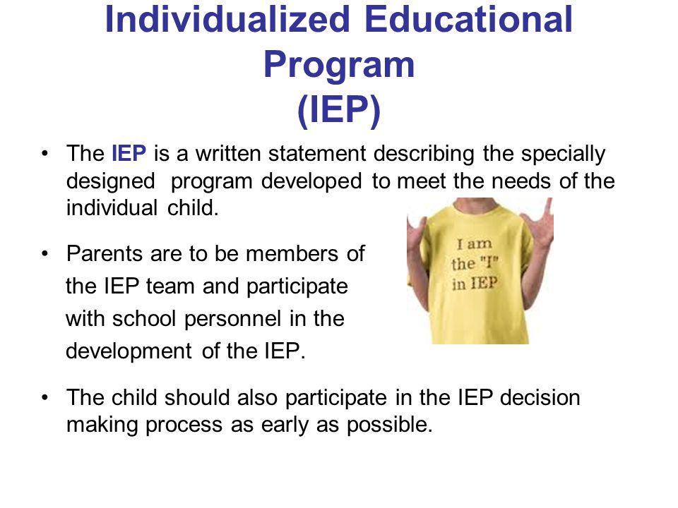 Individualized Educational Program (IEP)