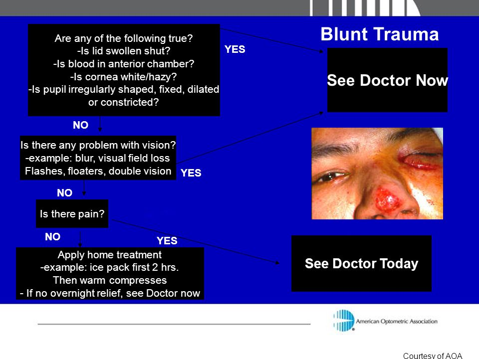 Blunt Trauma See Doctor Now See Doctor Today