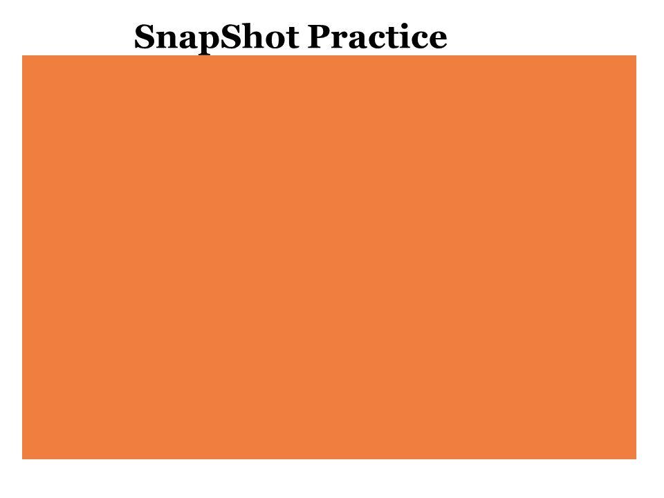 SnapShot Practice