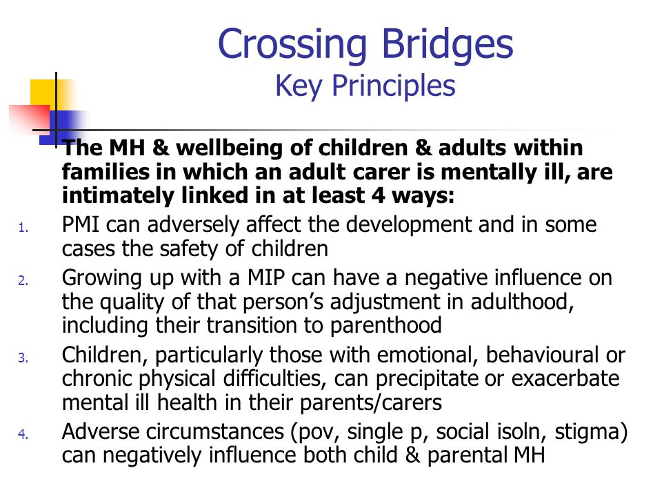 Crossing Bridges Key Principles