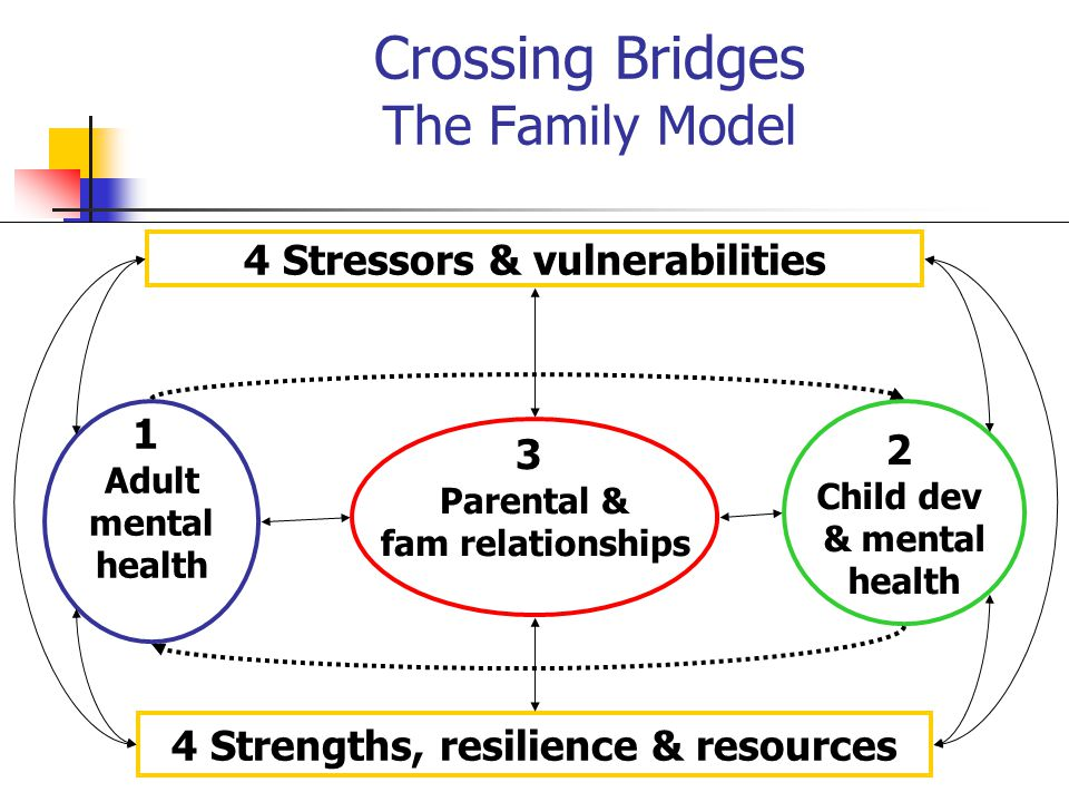 Crossing Bridges The Family Model
