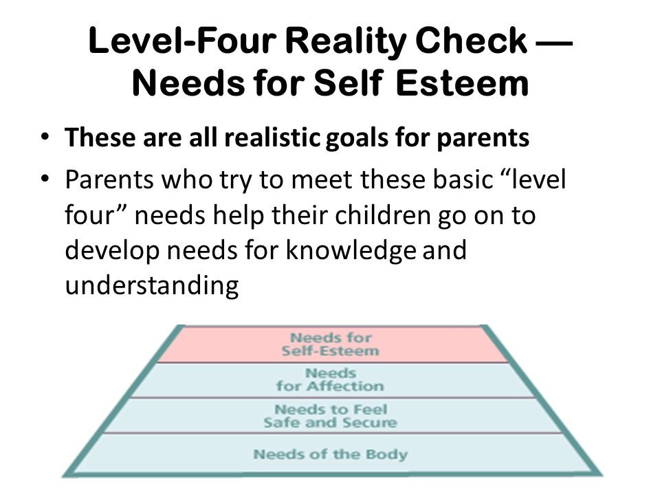 Level-Four Reality Check — Needs for Self Esteem