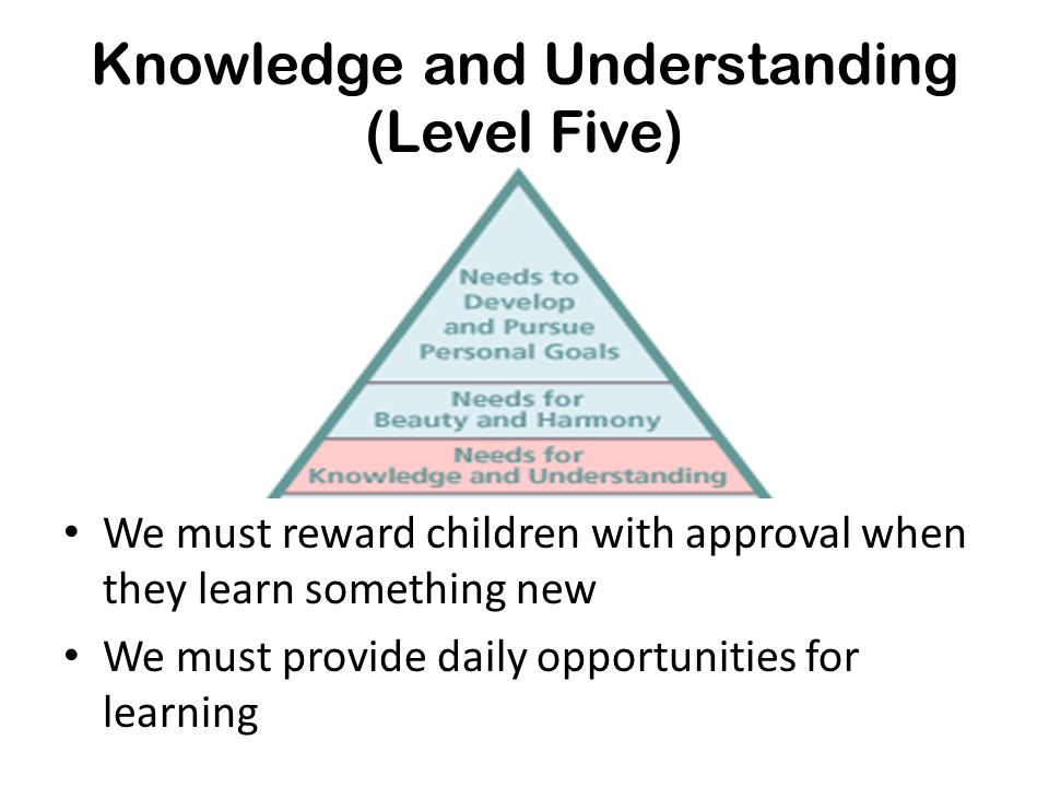 Knowledge and Understanding (Level Five)
