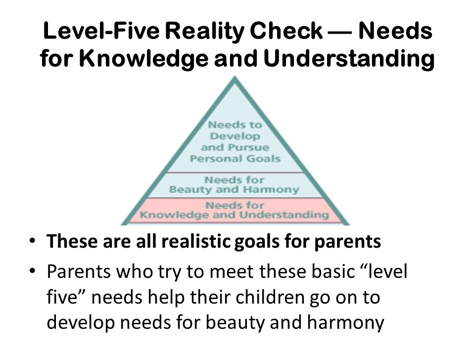 Level-Five Reality Check — Needs for Knowledge and Understanding