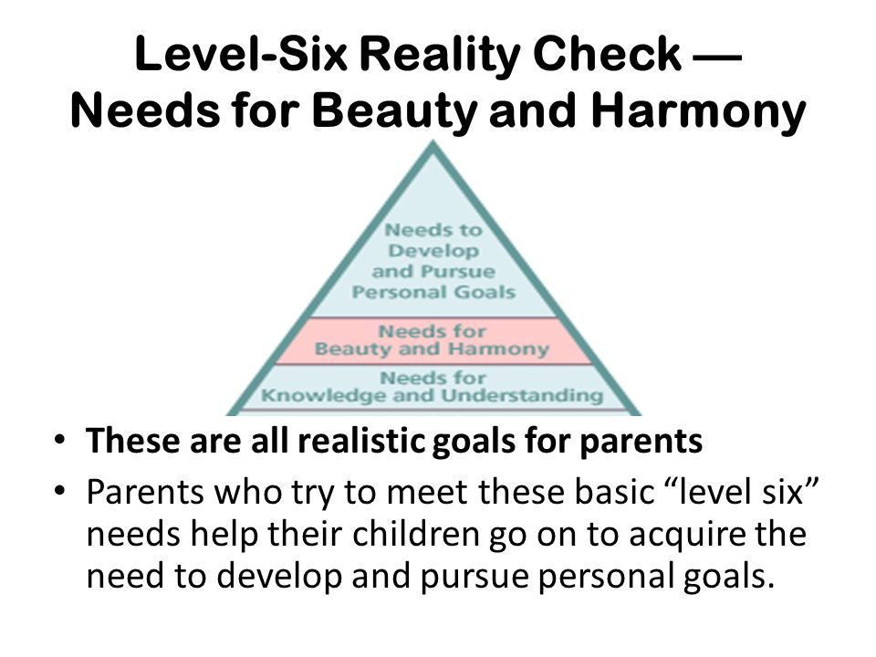 Level-Six Reality Check — Needs for Beauty and Harmony