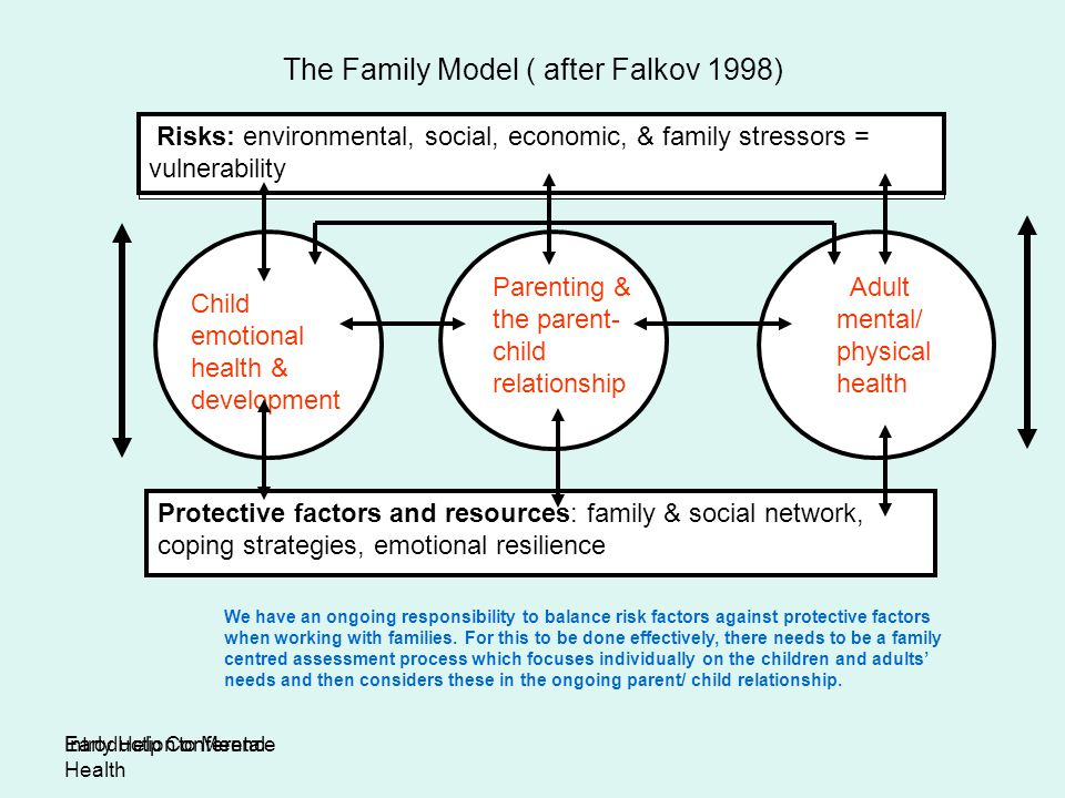 The Family Model ( after Falkov 1998)