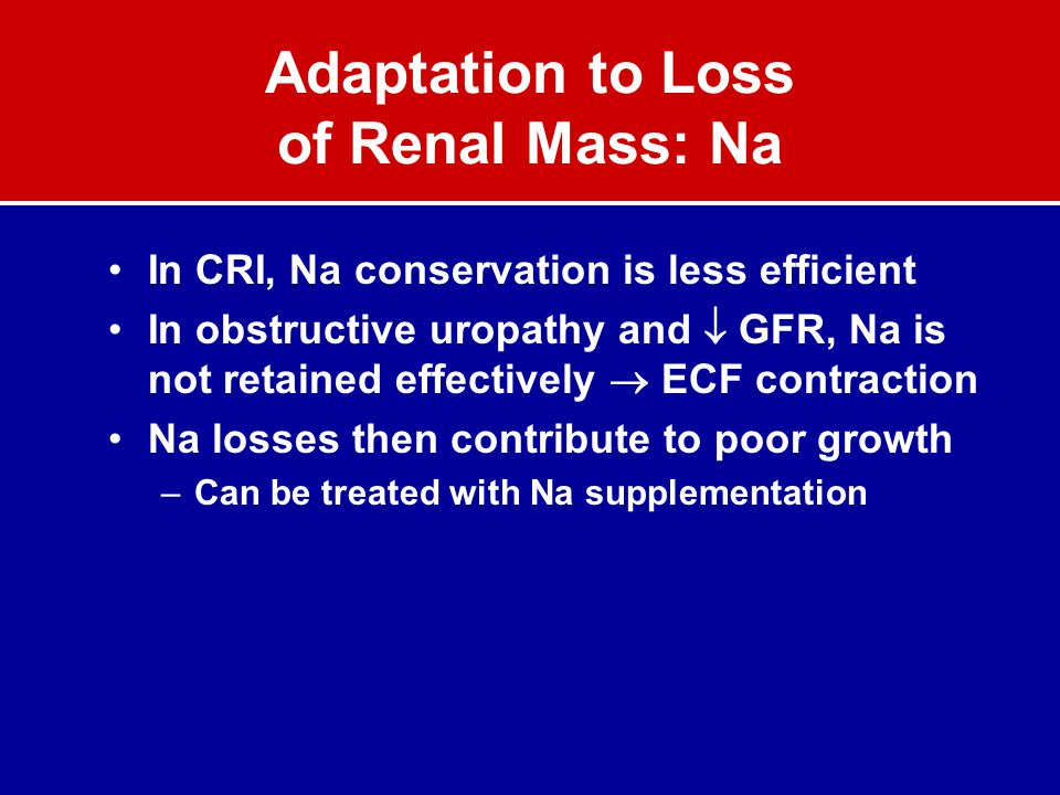 Adaptation to Loss of Renal Mass: Na