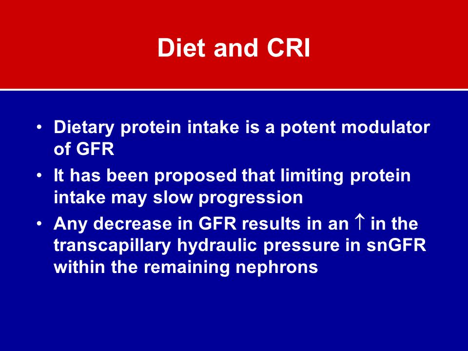 Diet and CRI Dietary protein intake is a potent modulator of GFR