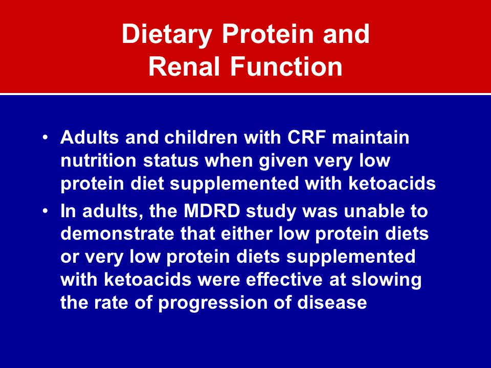 Dietary Protein and Renal Function