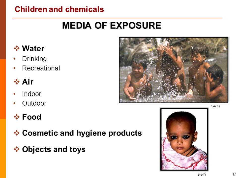 MEDIA OF EXPOSURE Water Air Food Cosmetic and hygiene products