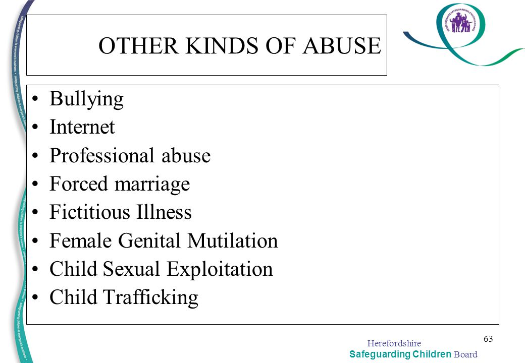 OTHER KINDS OF ABUSE Bullying Internet Professional abuse