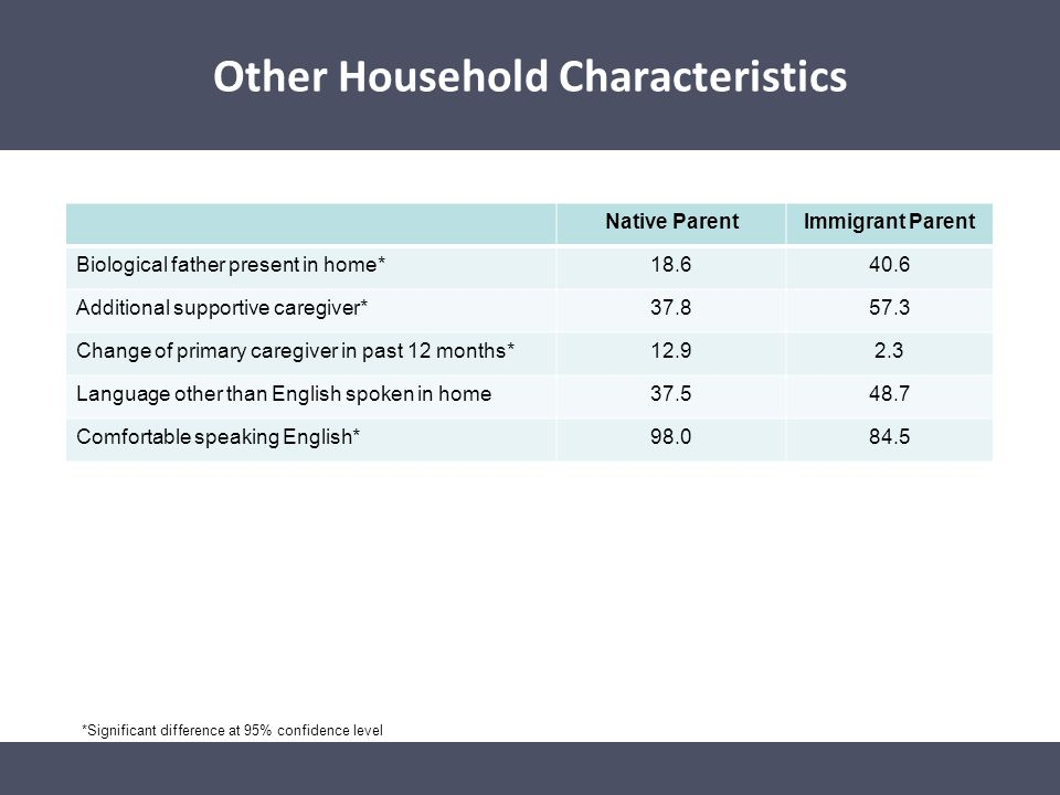 Other Household Characteristics