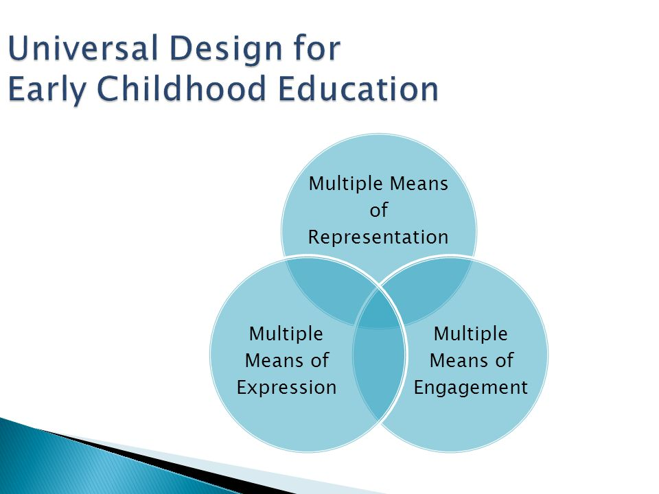 Universal Design for Early Childhood Education