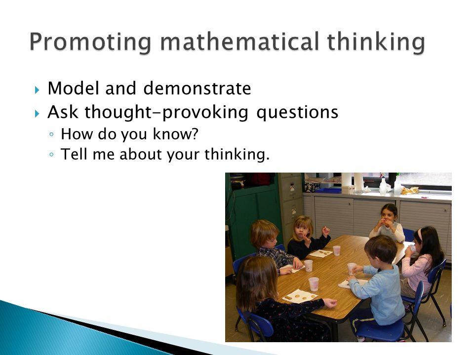 Promoting mathematical thinking
