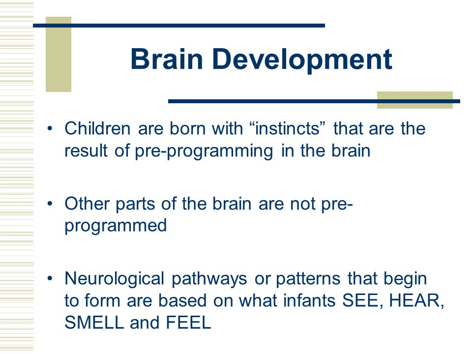 Brain Development Children are born with instincts that are the result of pre-programming in the brain.