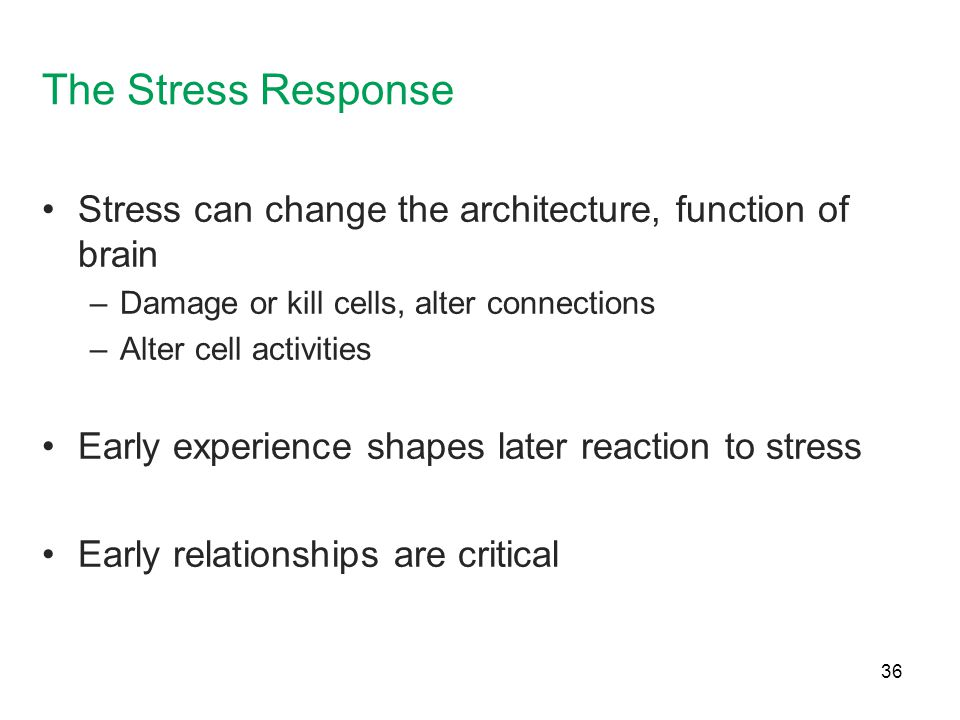 The Stress Response Stress can change the architecture, function of brain. Damage or kill cells, alter connections.