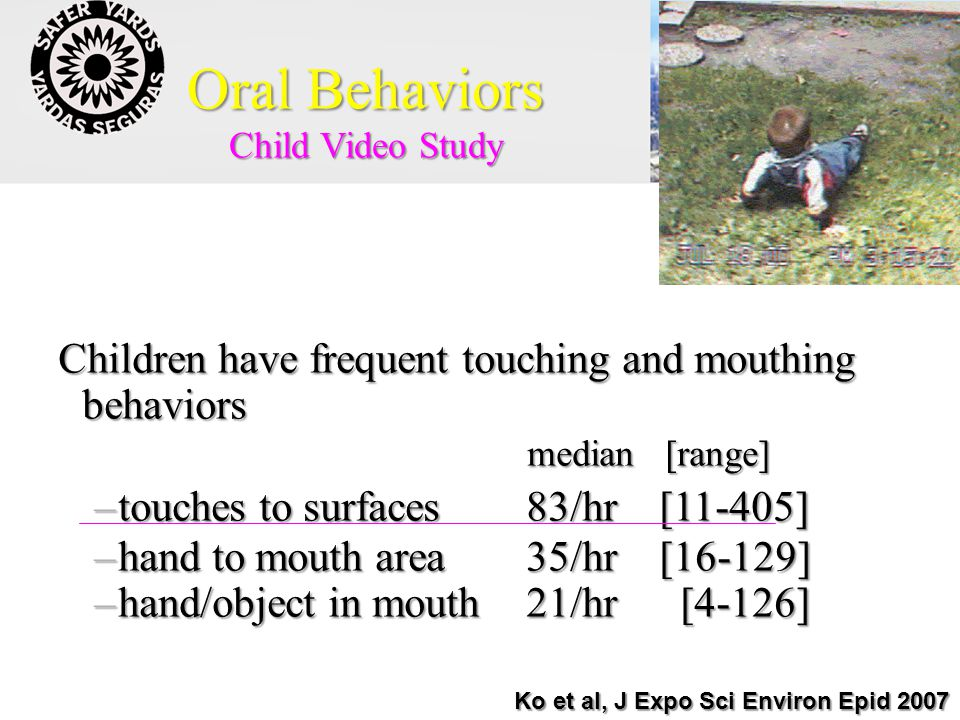 Oral Behaviors Children have frequent touching and mouthing behaviors