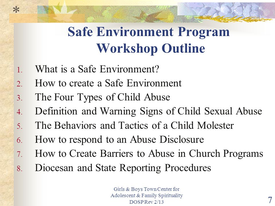 Safe Environment Program Workshop Outline
