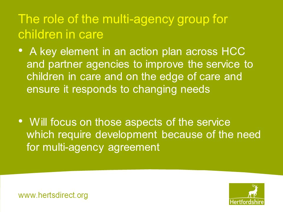 The role of the multi-agency group for children in care