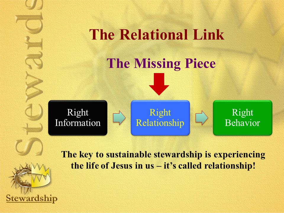 The Relational Link The Missing Piece Right Information