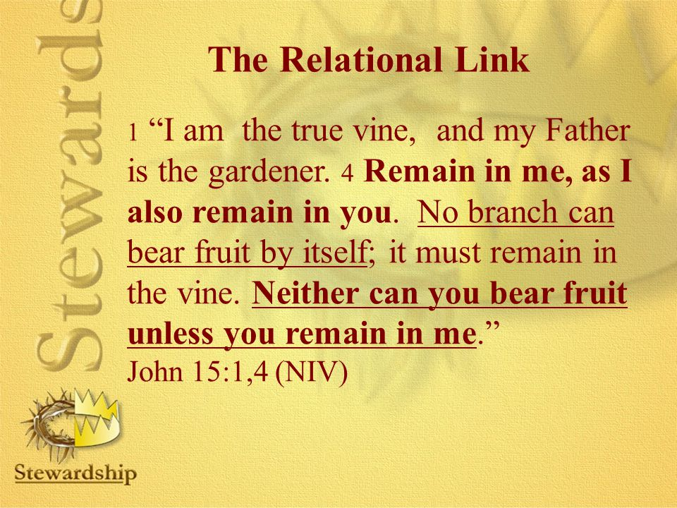 The Relational Link