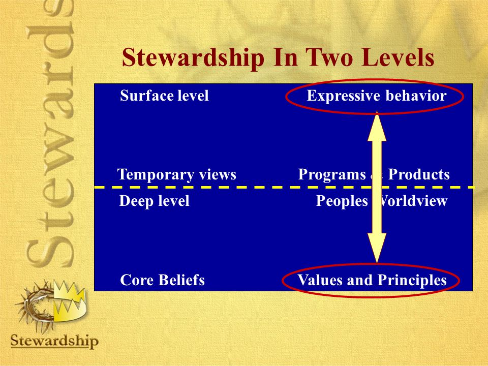 Stewardship In Two Levels