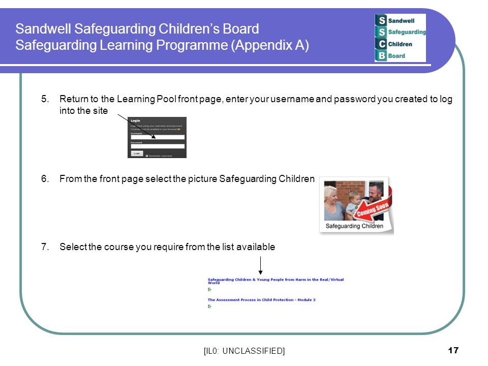 Sandwell Safeguarding Children's Board Safeguarding Learning Programme (Appendix A)