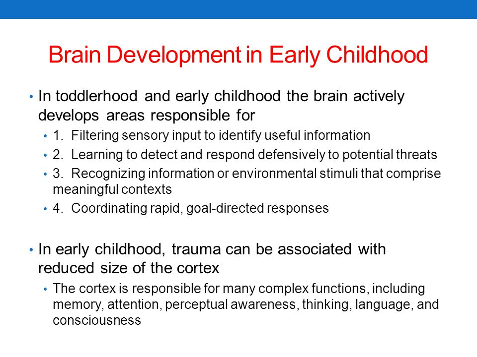 Brain Development in Early Childhood