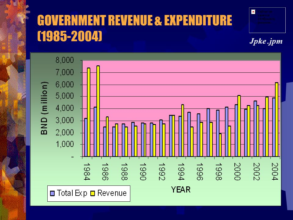 GOVERNMENT REVENUE & EXPENDITURE (1985-2004)