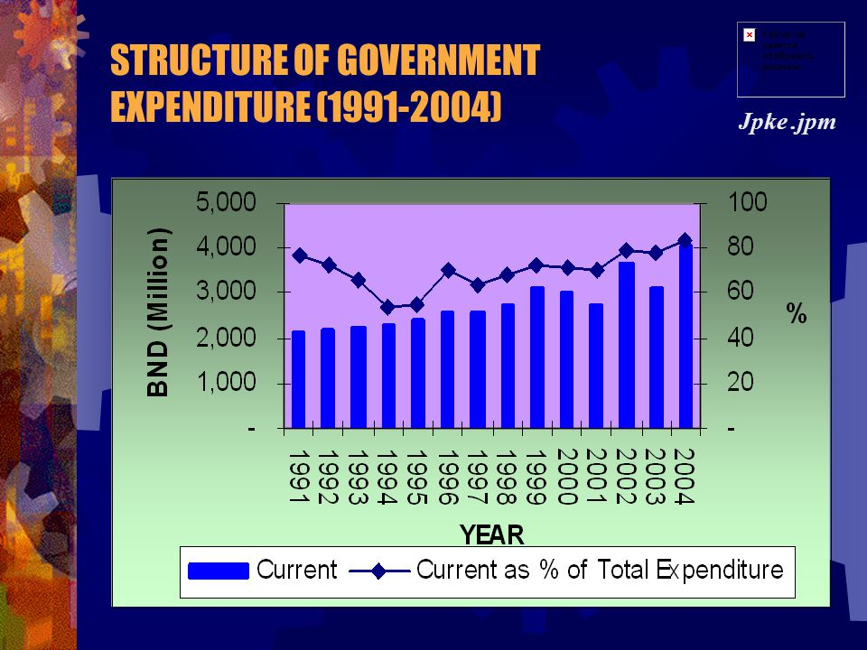 STRUCTURE OF GOVERNMENT EXPENDITURE (1991-2004)