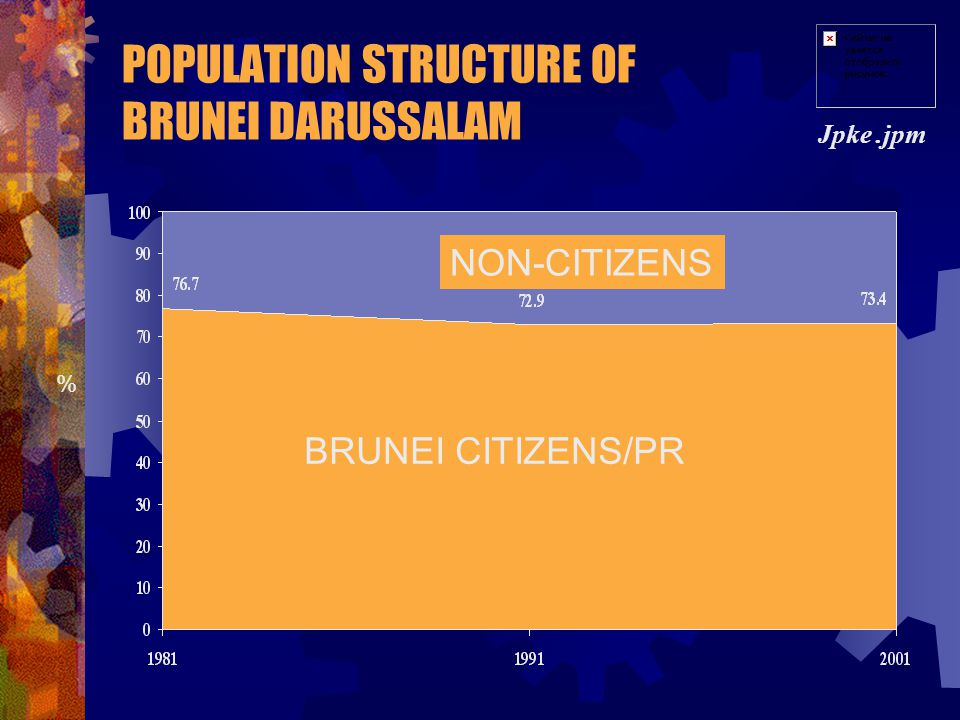 POPULATION STRUCTURE OF BRUNEI DARUSSALAM