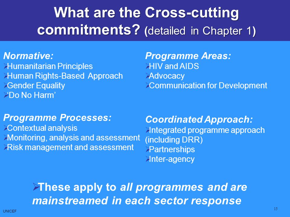What are the Cross-cutting commitments (detailed in Chapter 1)
