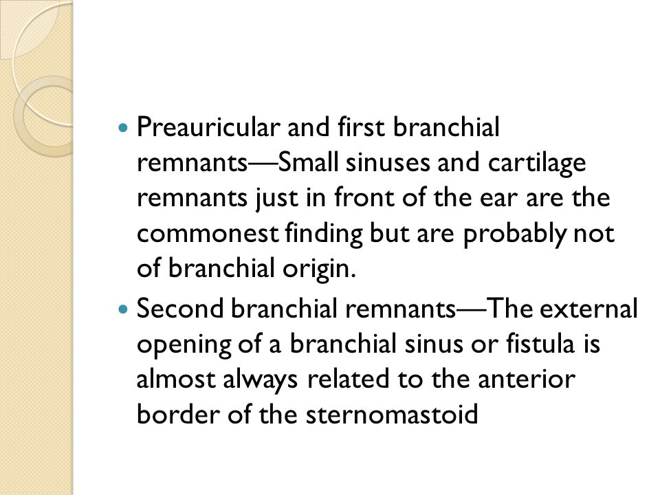 Preauricular and first branchial remnants—Small sinuses and cartilage remnants just in front of the ear are the commonest finding but are probably not of branchial origin.