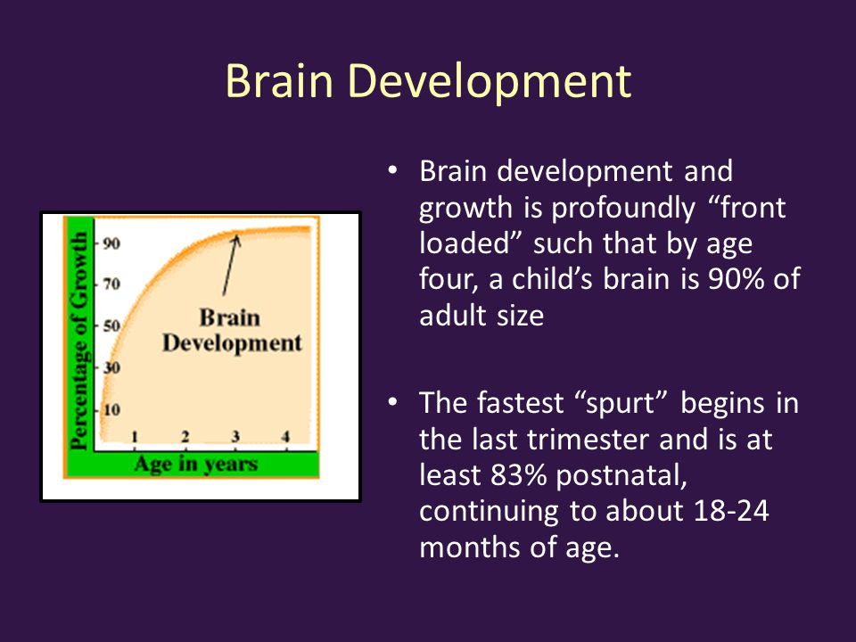 Brain Development Brain development and growth is profoundly front loaded such that by age four, a child's brain is 90% of adult size.