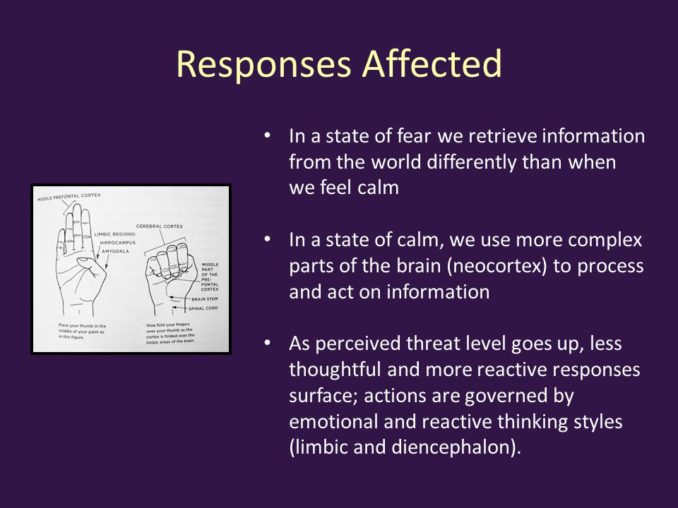Responses Affected In a state of fear we retrieve information from the world differently than when we feel calm.