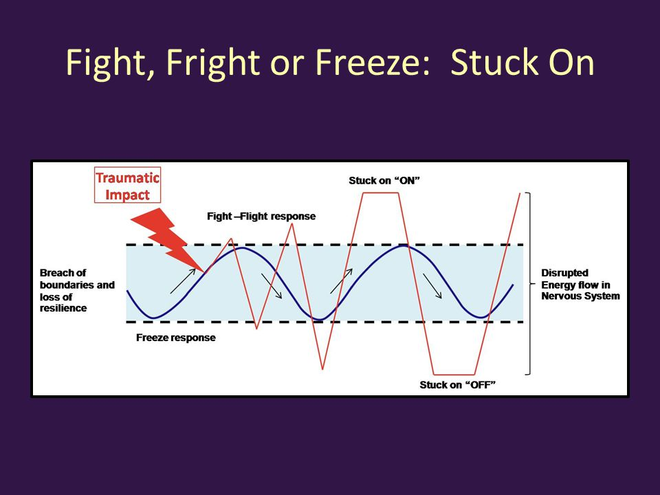 Fight, Fright or Freeze: Stuck On