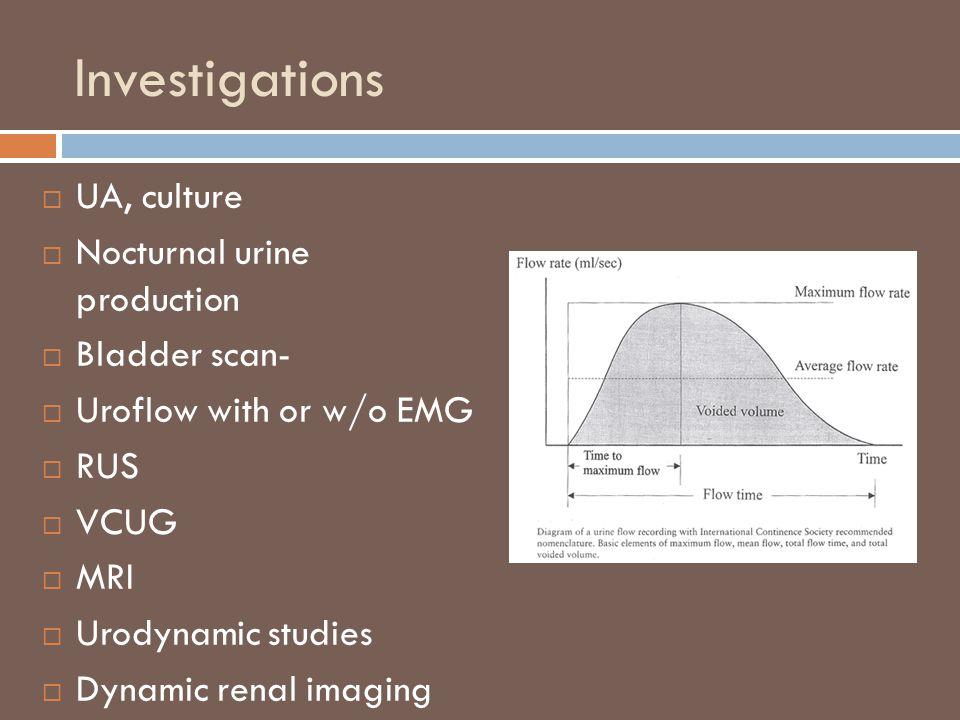 Investigations UA, culture Nocturnal urine production Bladder scan-
