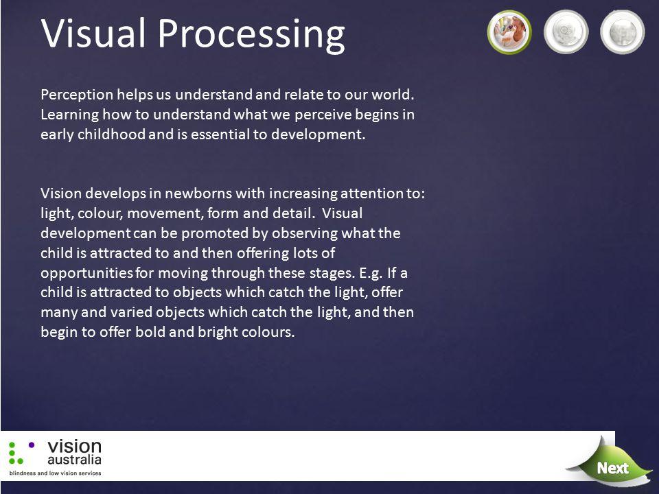 Visual Processing Next