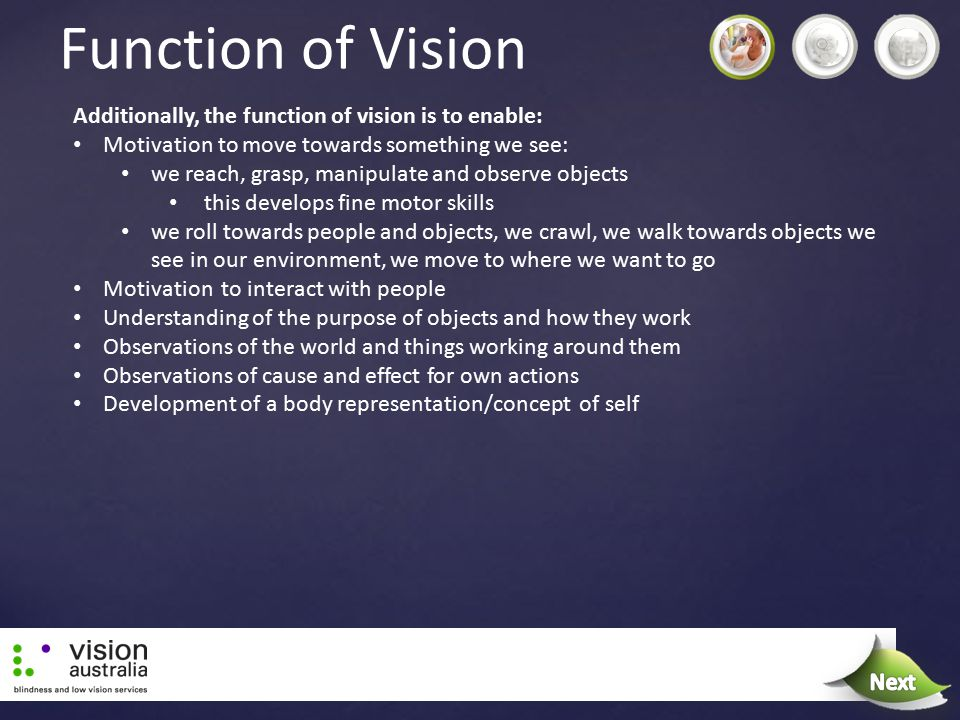 Function of Vision Next